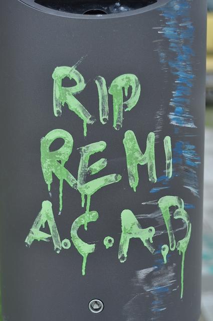 remi again